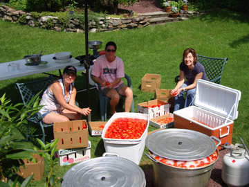 washing and sorting plum tomatoes before canning