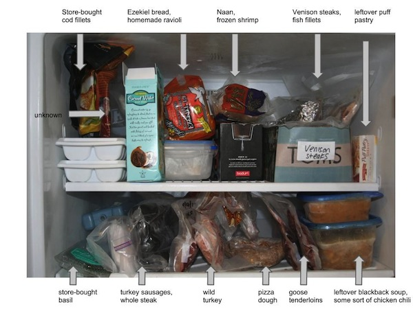 a-diagram-of-my-freezer