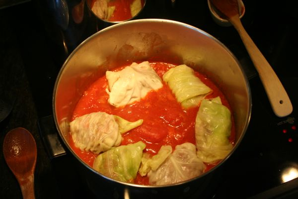 fresh stuffed cabbage simmering in the pot