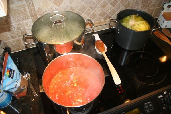cooking tomato sauce on the stovetop