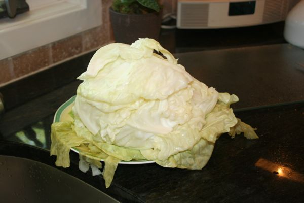 cooked green stuffed cabbage